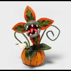 Target Halloween Small Orange Succulent Hyde & EEK